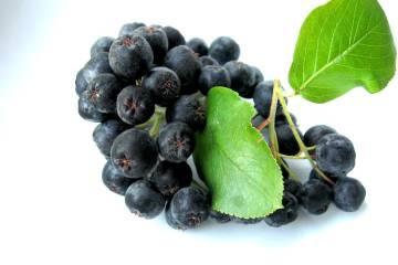 Jarabina čierna