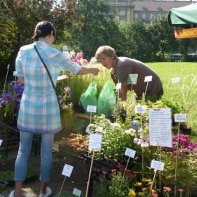 Predaj kvetov je tu dlhší: O rady pestovateľa