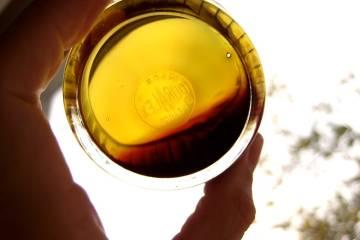 Olej proti svetlu prechádza zo zelenkastej farby, cez žltú až po bordovú