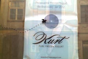 Kurt Frozen Yogurt