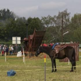 Kone, mláťačky, kosenie trávy